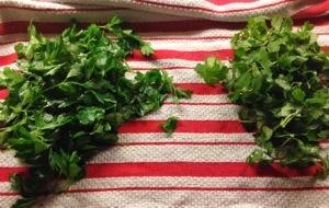parsley and cilantro