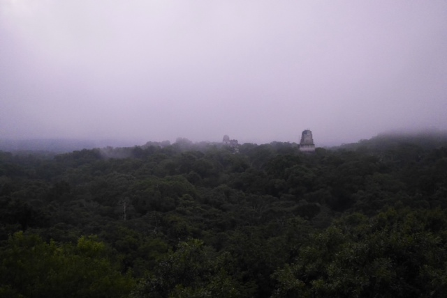 view from Temple IV